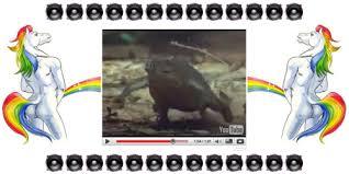 Interior Crocodile Alligator I Drive A Chevrolet Movie Theater The Art Of Foo