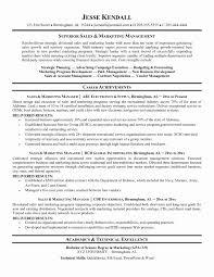 resume format sles sle marketing beautiful sales marketing resume format