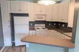 used kitchen cabinets for sale greensboro nc 3001 greystone point j greensboro 27410 nc