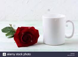 white coffee mug mockup with dark red rose empty mug mock up for