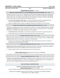 example of sales resume graduate media sales executive cv sales