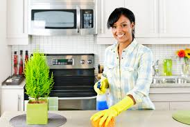 Cleaning Kitchen Young Woman Cleaning Kitchen U2013 Purifypros