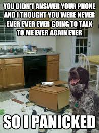 Dog Phone Meme - you didn t answer your phone and i thought you were never ever