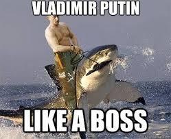 Putin Meme - vladimir putin meme