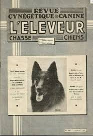 belgian sheepdog traits belgian sheepdog products all and as