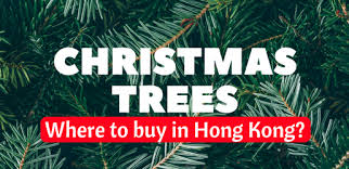 where to buy real and artificial trees in hong kong in