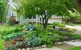 How To Plant A Vegetable Garden In Your Backyard by Everyday Gardeners