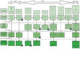 starbucks service blueprint work breakdown structure creately