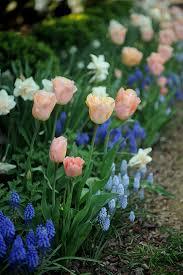 wedding flowers hshire flower experts eastwood flowers ideas