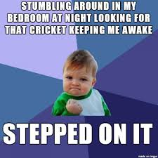 Crickets Chirping Meme - stupid nighttime chirping cricket meme on imgur
