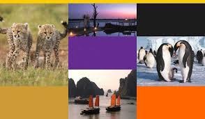 liste de mariage voyage listes de mariage au tigre vanillé agence de voyages sur