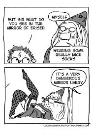 Funny Meme Comics Tumblr - harry potter comics by floccinaucinihilipilificationa album on imgur
