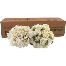 bulk hydrangeas combo box callas hydrangeas the wedding costco