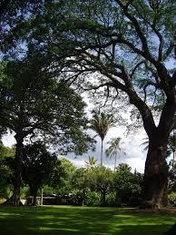 Botanical Gardens Images by Foster Botanical Garden Wikipedia