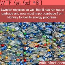2145 best interesting facts images on random facts