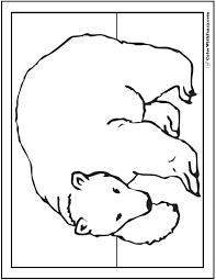 polar bear color page polar bear drawing theme