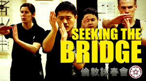 Seeking Wings Wing Chun What Seeking The Bridge Really Means Probing
