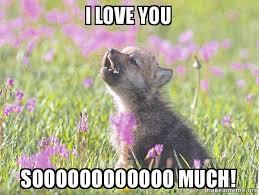 I Love You This Much Meme - i love you this much meme more information anunt gratis info