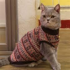 cat sweater tammy cat sweater brown