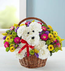 balloon delivery winston salem nc florista by adolfos creation a dogable in a basket winston salem nc