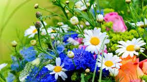 Wedding Flowers Near Me Flowers Near Me Wallpaper Wedding Flowers