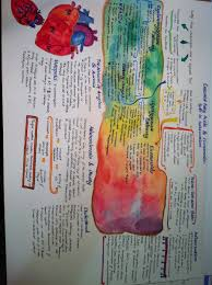 pharmacology exam study by sjpiper145 on deviantart study