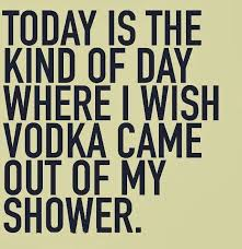best 25 vodka quotes ideas on quotes