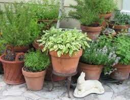Herb Garden Pot Ideas Fashionable Ideas Herb Garden Pots Herbs Are For Growing