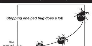 Bed Bugs In Mattress Bed Bug Reproduction Rates Bed Bug Covers U2013 Pest Assure Bed Bug