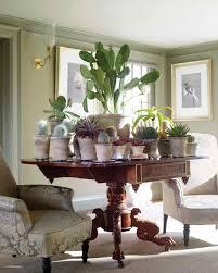 How To Arrange Indoor Plants by 100 How To Arrange Indoor Plants How To Grow An Indoor