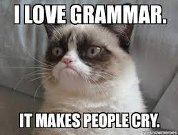Grammar Meme - grumpy cat i love grammar i love grammar it makes people cry