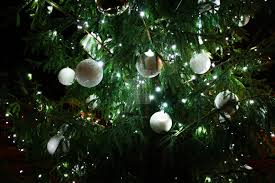 tree with big white balls by daftphoe on deviantart