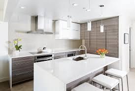 Modern Condo Kitchen Design Ideas For Condo Kitchen Designs Inspirational Home Interior
