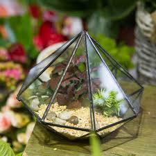 terrarium table 100 terrarium table diy succulent terrarium wooden window