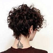 short hair with shag back view gorgeous short curly hair ideas you must see short curly hair