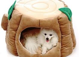 Cute Puppy Beds Beds For Small Dogs Korrectkritterscom