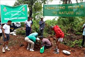 Decorative Trees In India Initiatives For Clean And Green Navy Indian Navy