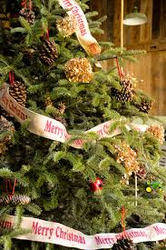 christmas tree ideas lauren huyett interiors