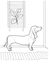 dog coloring pages 9 teenagers coloring pages favorite dog