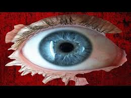 search result youtube video top 10 foods that change eye color in
