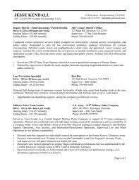 Security Specialist Resume Sample Resume For Government Employee Gallery Creawizard Com