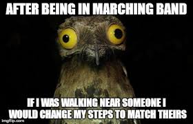 Marching Band Memes - you should of seen me following the principle in the hallway imgflip