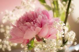 matrimonio fiori fiori matrimonio giugno per risparmiare ho fatto cos祠 sr