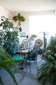 62 best house plants images on pinterest plants gardening and