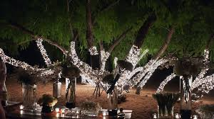 light rentals in depth events christmas light event rentals and installation