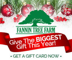 gift card trees news information archives page 2 of 6 fannin tree farm