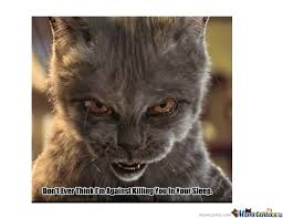 Evil Cat Meme - evil cat by funnyisme meme center