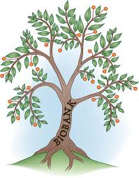 reaching for the branch on the biobank tree of knowledge