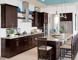 cabinet mesmerize kitchen cabinet design ideas india gratify gun