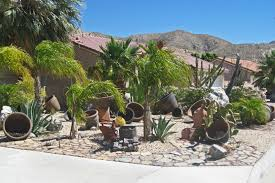inspiring front yard landscaping ideas with palm trees images